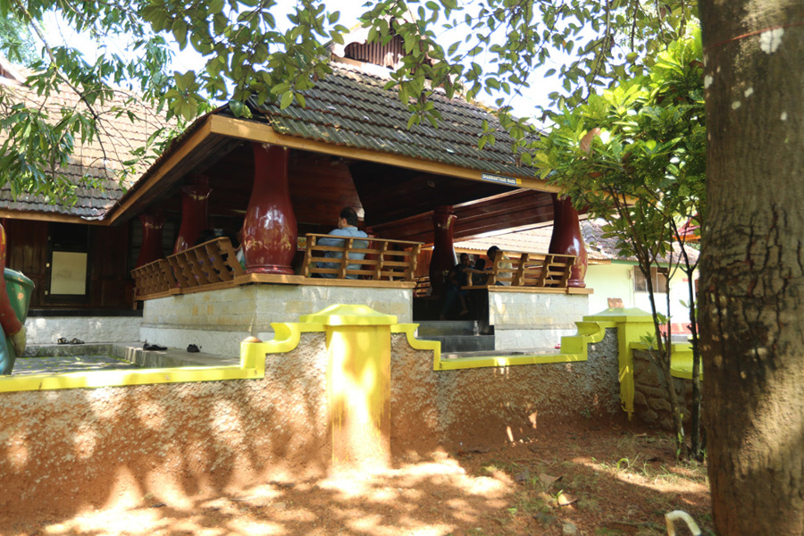 sreedhareeyam-ayurvedic-eye-hospital-research-centre-3