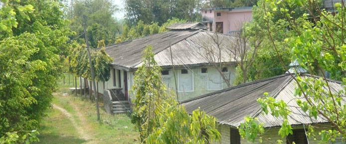 purwanchal-vipassana-centre-dhamma-birata-nepal-3
