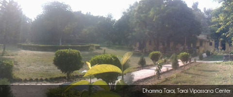 dhamma-tarai-nepal-3