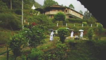 vipassana-meditation-centre-dhamma-kuta-sri-lanka-3