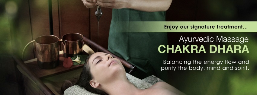 botanica-day-spa-ayurveda-center-bali-indonesia-6