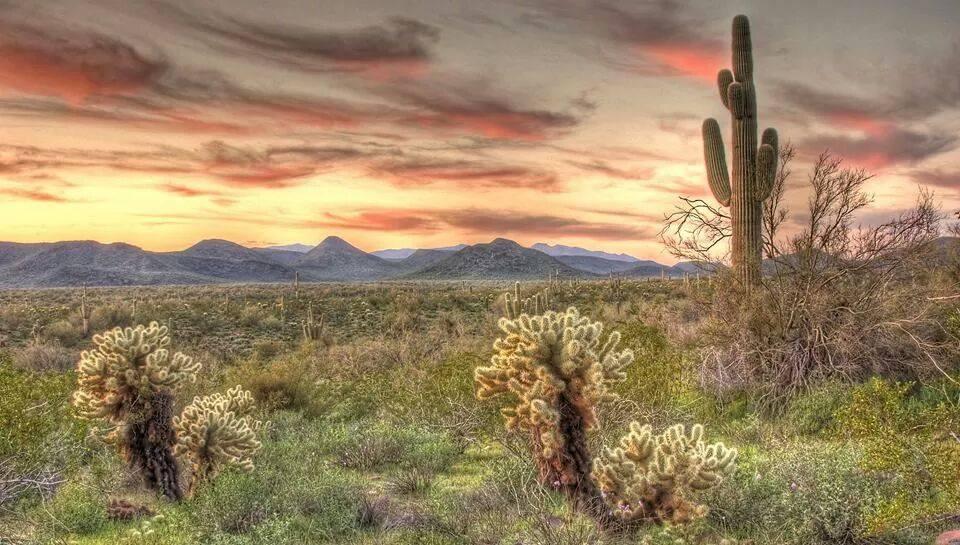 highlands-resorts-at-virde-ridge-arizona-united-states-4
