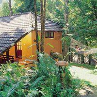 vythiri-resort-wayanad-kerala-india-9