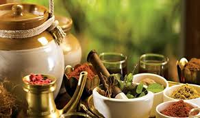 ayurdara-ayurveda-center-cochin-kerala-india-6