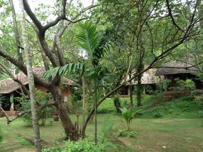 sarovaram-ayurvedic-health-centre-14
