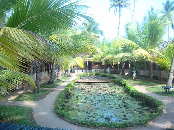 cherai-beach-resorts-5