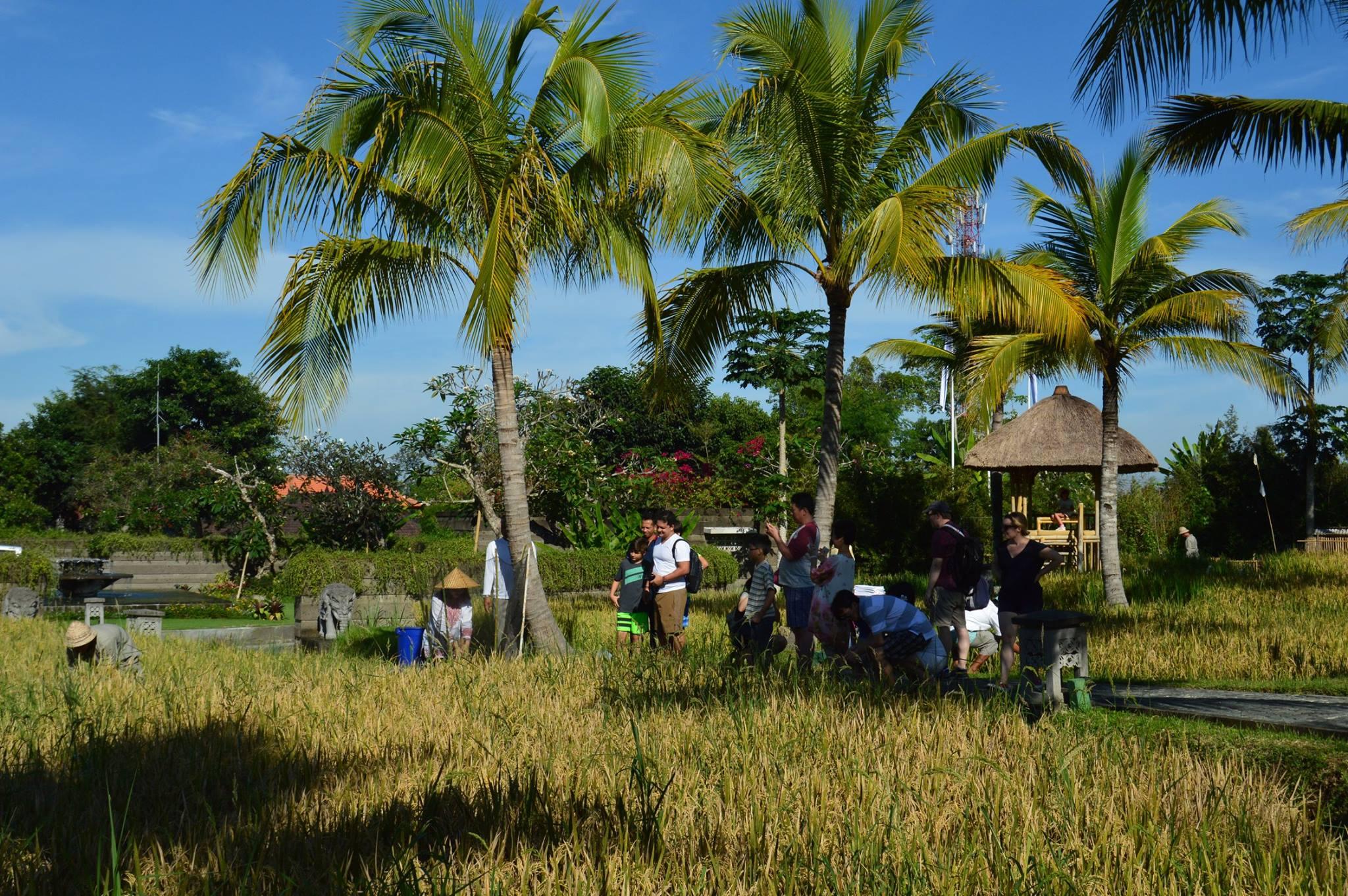 kamandalu-ubud-retreat-center-indonesia-15