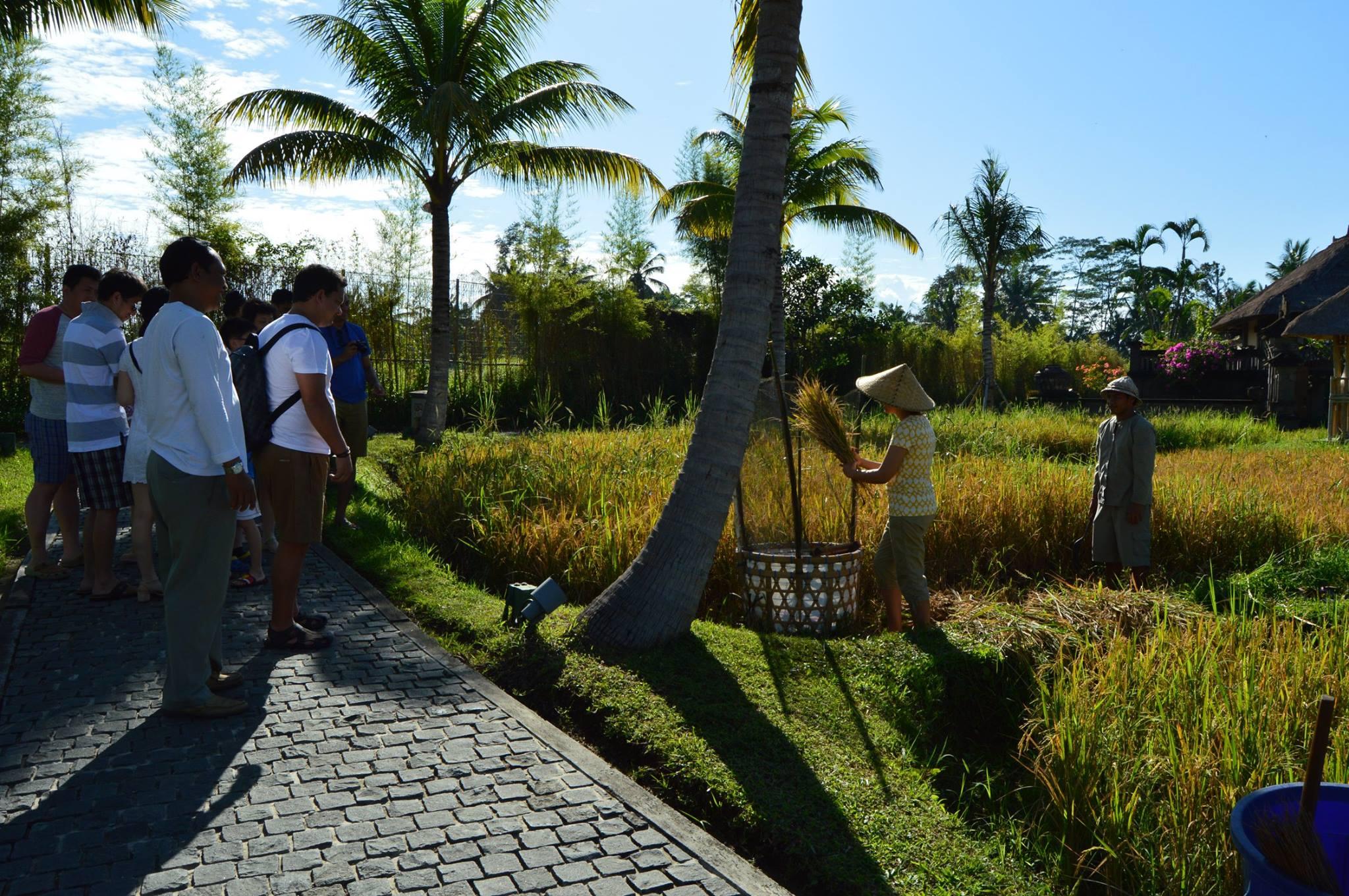 kamandalu-ubud-retreat-center-indonesia-10