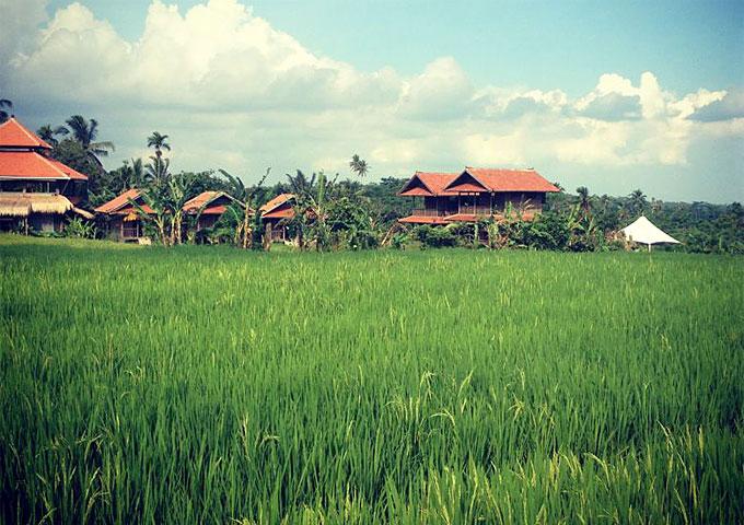 bali-silent-retreat-center-bali-indonesia-6