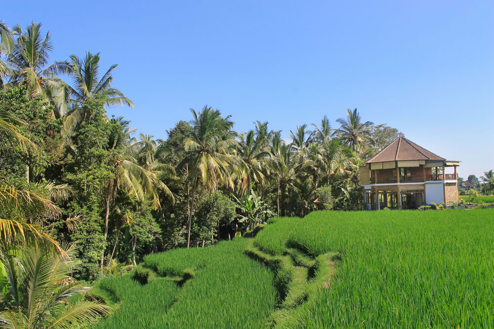 ubud-yoga-house-studio-indonesia-3