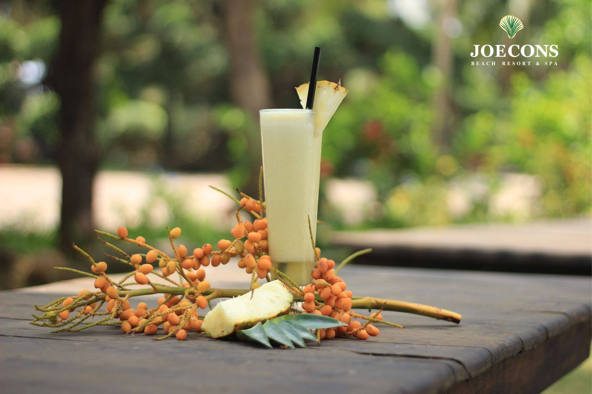 joecons-ayurveda-beach-resort-goa-13