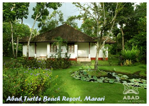 turtle-beach-mararikulam-beach-resort-alleppey-5