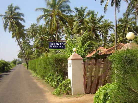asokam-beach-resort-kannur-kerala-india-8
