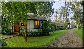 bolgatty-palace-and-island-resort-kochi-kerala-india-9