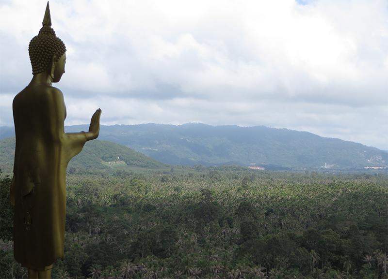 suryamuni-healing-ayurveda-center-surat-thani-thailand-15