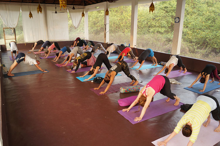 28-days-200-hrs-yoga-teacher-training-at-mahi-yoga-center-dharamsala-india.jpg
