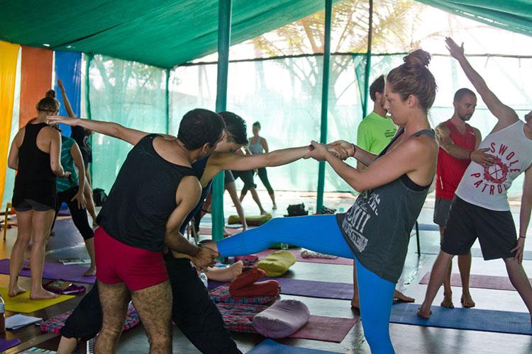 31-days-300-hrs-yoga-teacher-training-at-mahi-yoga-center-dharamsala-india.jpg