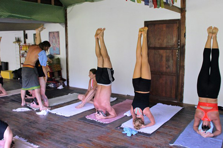 5-day-detox-yoga-retreat-at-the-yoga-retreat-koh-phangan-thailand.jpg