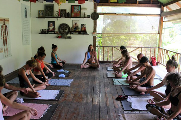 7-day-detox-yoga-retreat-at-the-yoga-retreat-koh-phangan-thailand.jpg